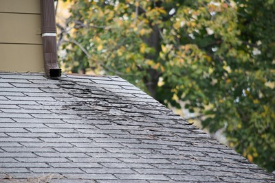 Roof Repair in East Boston Massachusetts